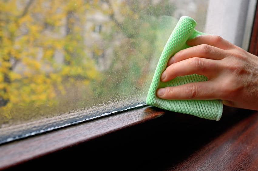 Window Condensation